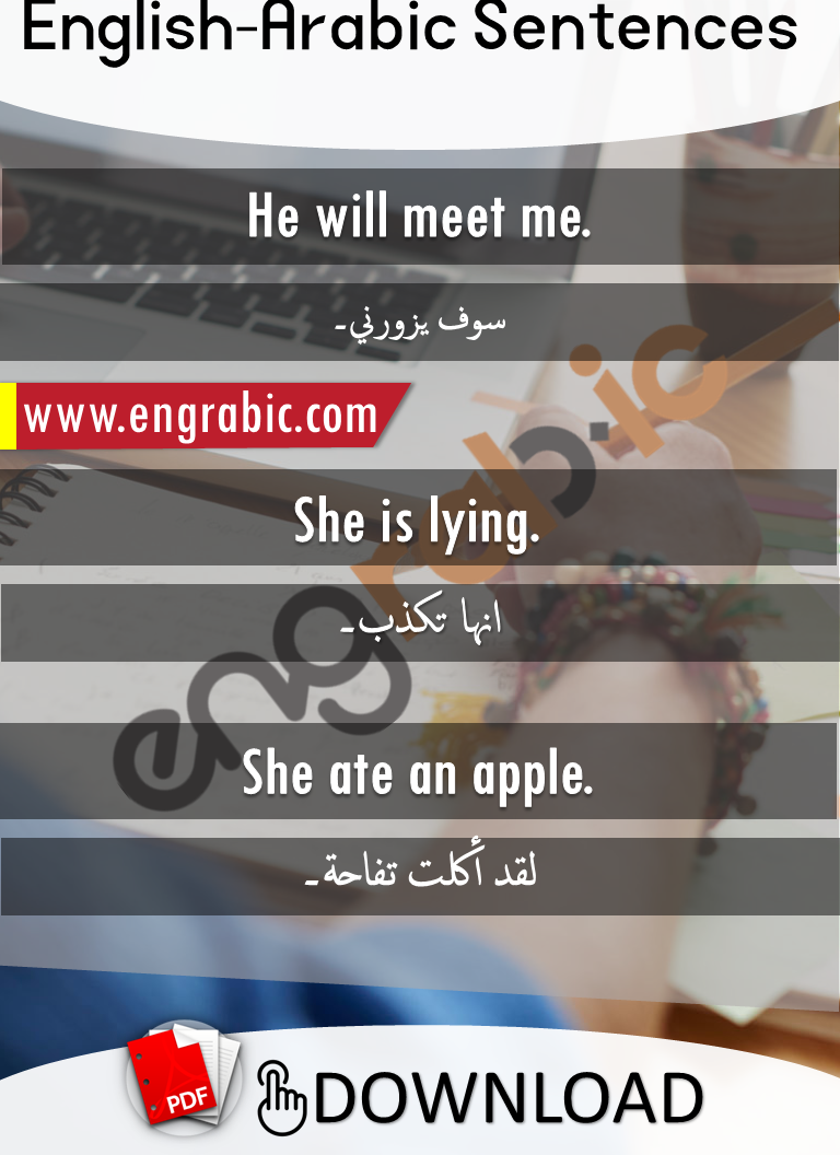 English to Arabic Sentences for daily conversation with translation and PDF. English to Arabic Phrases for daily use for beginners.
