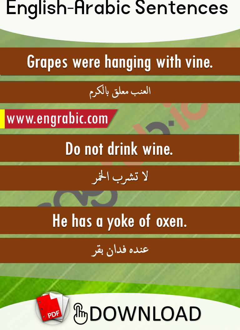 Short Arabic-English sentences for beginers.Simple English sentences with Arabic translation. Short English phrases with Arabic.