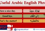 Useful English sentences in Arabic Translation - 50 Sentences