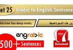 Random Arabic to English phrases