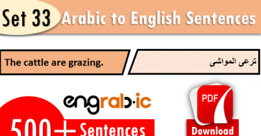 English sentences in Arabic which are used in Daily life. Daily use English sentences in school with translation in Arabic. Daily routine Arabic sentences