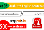 Basic Arabic to English Sentences. Arabic sentences in English. Arabic translation in English. Common Arabic sentences with English.