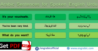 Learn Basic Arabic Sentences and Phrases with their meanings in Hindi and English. Common Arabic Sentences in English for beginners.
