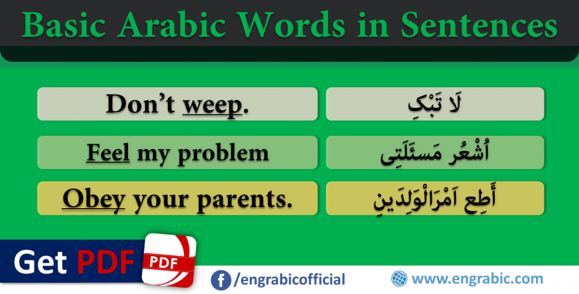 Basic Arabic Words Used in Sentences, Learn Basic English Vocabulary through Arabic. Important Arabic words Used into sentences. Basic Arabic Vocabulary meaning in English in sentences