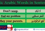 Basic Arabic Words Used in Sentences, Learn Basic English Vocabulary through Arabic. Important Arabic words Used into sentences. Basic Arabic Vocabulary meaning in English in sentences