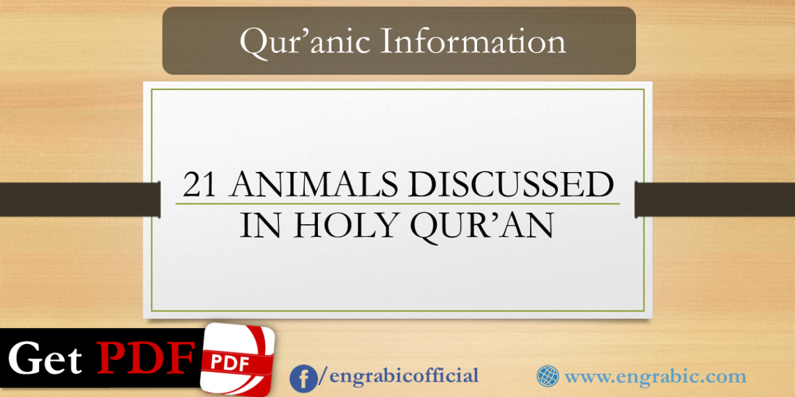 A list of 21 Animals Discussed in Holy Qur'an. Animals name in Arabic discussed in Holy Book Qur'an. Dog name/elephant name/lion name in Quran. There are more than 200 verses in Quran dealing with Animals and Six Chapters of Quran are named after Animals or insects. Animals and birds mentioned in Quran, creatures mentioned in Quran.