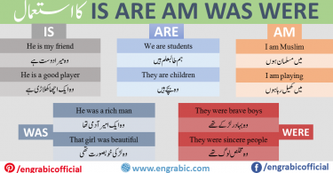 Use Of IS AM ARE Is am Are  are used as verb in the Sentences which end on ہے،ہوں،ہیں.  These are Used as: He, She, It, Single Noun IS I AM We, You, They, Plural Noun ARE Use is when the subject is a singular noun or a third person singular pronoun. Use are when the subject is a plural noun or a plural pronoun (e.g. we, you, they). Use am when the subject is the first person pronoun I.