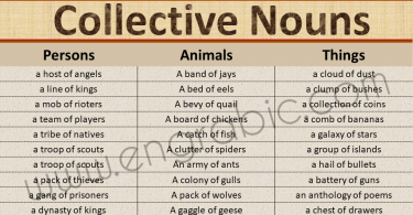 Collective Nouns are used to describe a group of persons, animals, or thing. This article helps you learn detailed list of collective nouns with PDF lesson. The table below shows a long list of collective nouns used in English.
