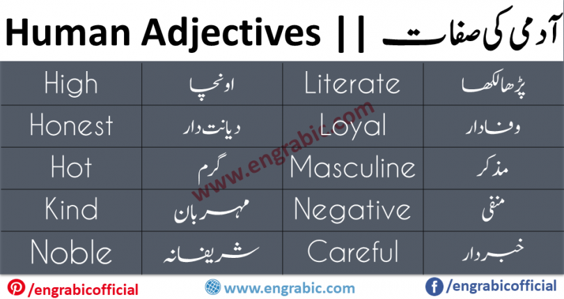 Here is a list of adjectives that may be used to describe the personality of a person. These adjectives are the often used to show the character and kind of a person(what kind of a person is someone, he/she is brave, coward, honest, dishonest etc). This list will tell you how to describe the personality of a person.
