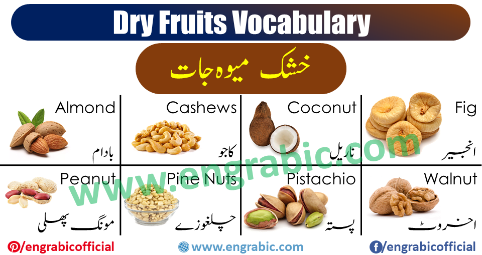 Learn Dry Fruits names in English and Urdu with images. Dry Fruits vocabulary is necessary to learn in Winter. Here we are with all the dry fruits used in winter