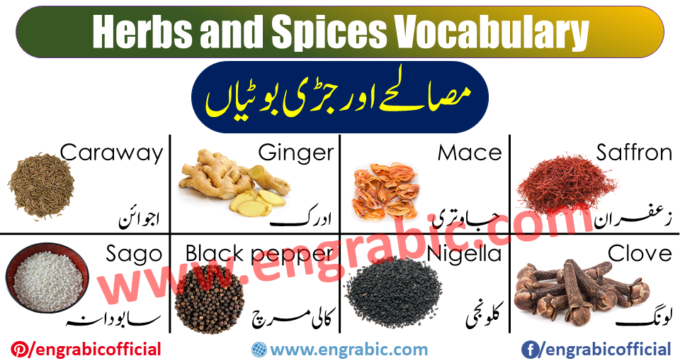 Herbs and Spices Vocabulary with images and Flashcards, this lesson helpful for student and learner to improve their Herbs and Spices vocabulary in English. Spices names! Spices such as salt, pepper, turmeric, onions, garlic, ginger, black peppers, cumin, etc., which are used in cooking.