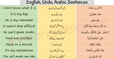 Arabic Sentences in English and Urdu for beginners. Learn Arabic through English and Urdu using these sentences. Learn Arabic through English and Urdu.