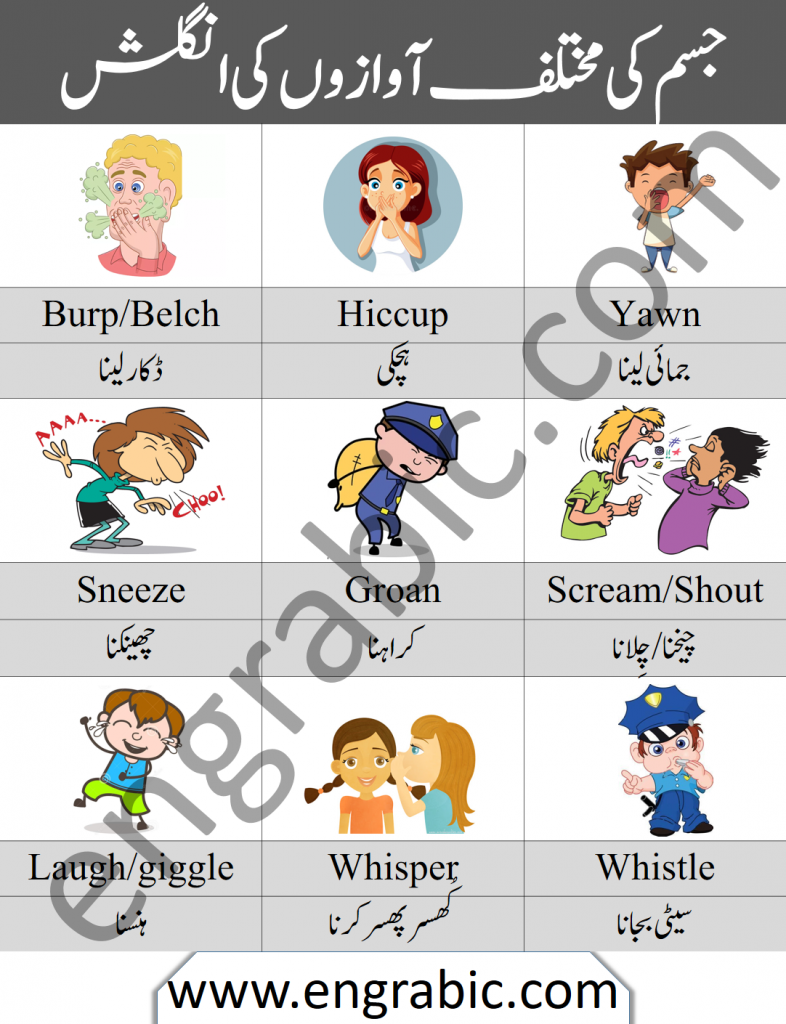 In this lesson, we will talk about different body sounds and noises. Our body emits different kinds of Sounds and Noises in different situations. So in this lecture, we'll try to learn all these sounds and noises in English and Urdu. Download PDF Lesson at the bottom of page.
