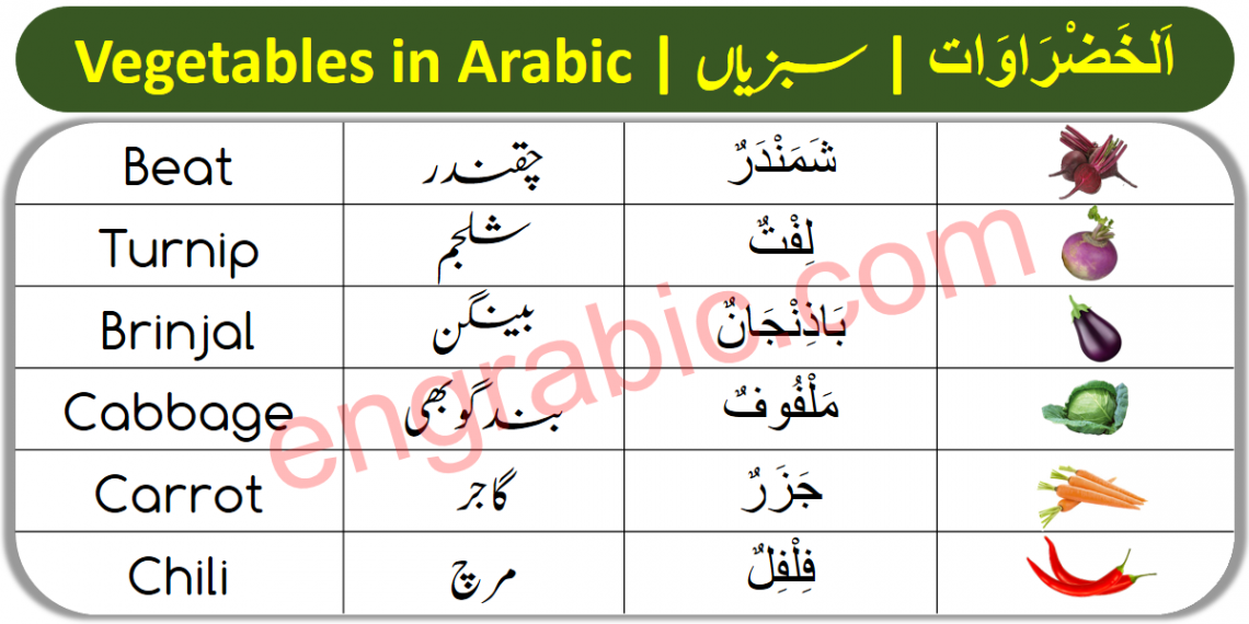 In this lesson, you will learn the names of Vegetables in Arabic with their translation in English and Urdu languages. You will be able to learn the names of vegetables in Arabic with their pronunciation as well.