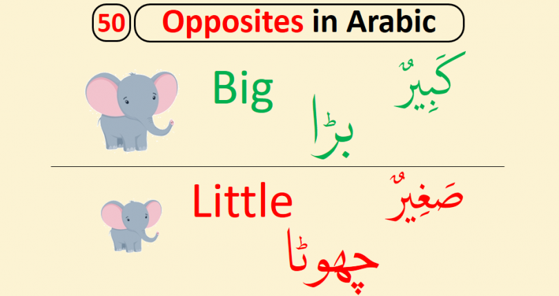 In this lesson, you will learn 50 New Opposite Words in Arabic with English and Urdu meanings for Kids. These opposite words are very helpful for you and very easy to learn. Opposite words are also explained with Pictures to help kids learn and understand better.