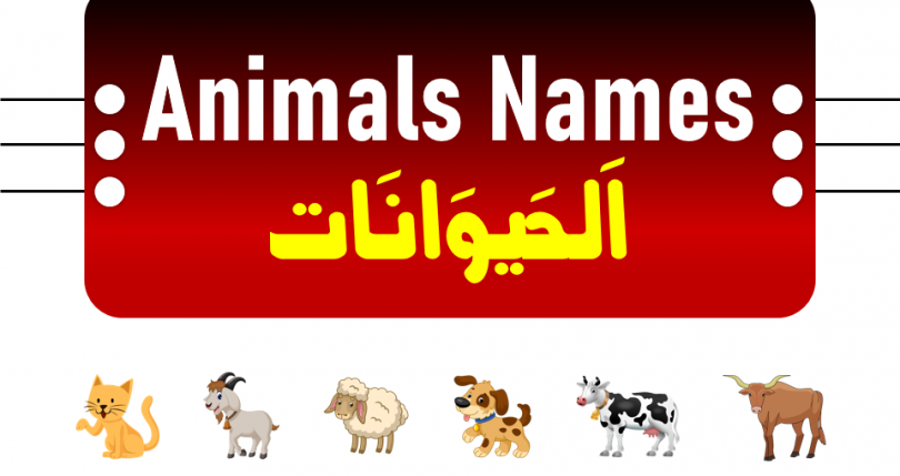 Learn the useful list of over 30 popular wild animals with their names. For many animals, particularly domesticated ones, there are specific names for males, females, young, and groups. Learning the names of the animals can be quite beneficial for young children. This video will help your children learn the names in Arabic with English and Urdu.